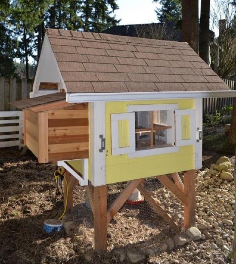 Budget chicken coop