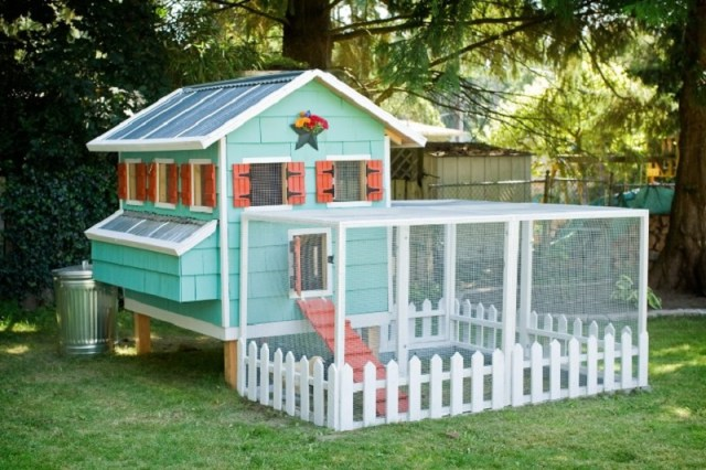 Minty chicken coop