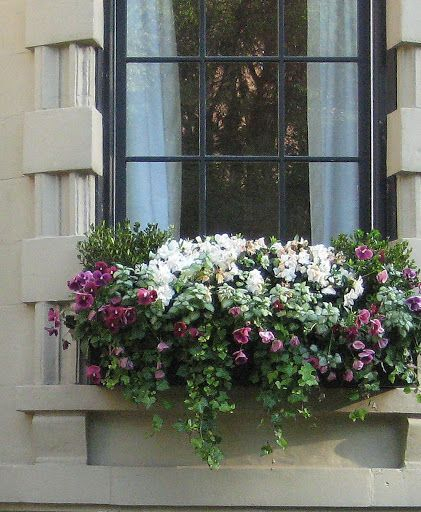 Cheap and easy fall window boxes ideas 12