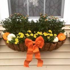 Cheap and easy fall window boxes ideas 32