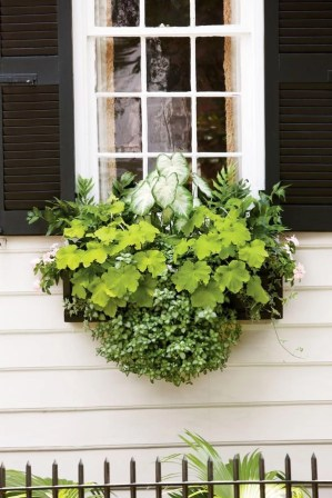 Cheap and easy fall window boxes ideas 53