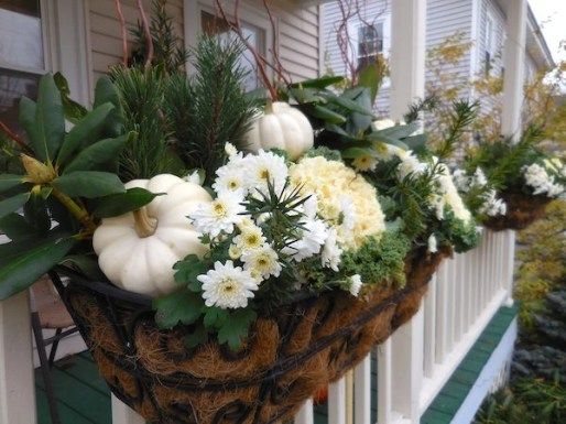 Cheap and easy fall window boxes ideas 55
