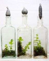 Simple ideas for adorable terrariums 08