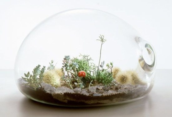 Simple ideas for adorable terrariums 14