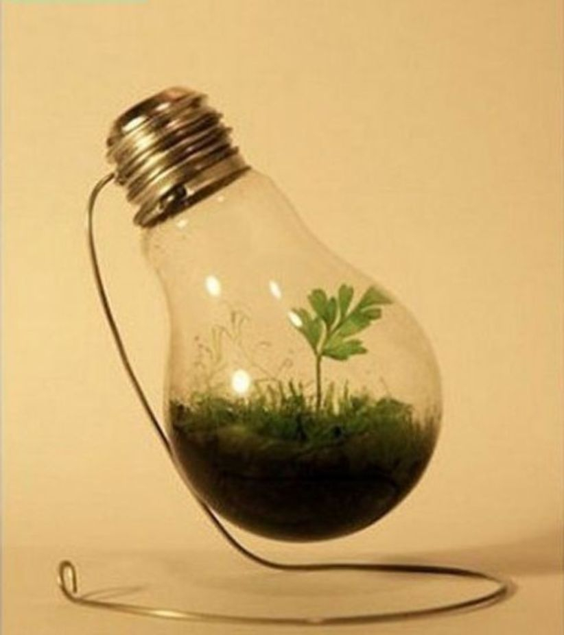 Simple ideas for adorable terrariums 20