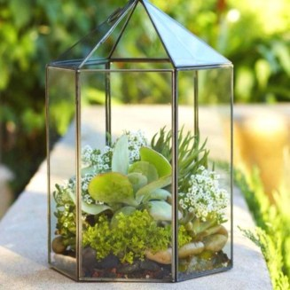 Simple ideas for adorable terrariums 37