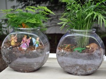 Simple ideas for adorable terrariums 48