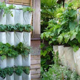 Inspiring vertical garden ideas for your small space 26
