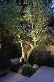 Most beautiful outdoor lighting ideas to inspire you 38