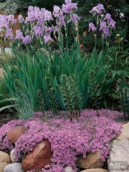 Simple rock garden decor ideas for your backyard 21
