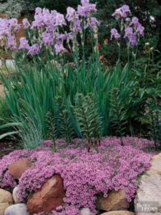 Simple rock garden decor ideas for your backyard 21