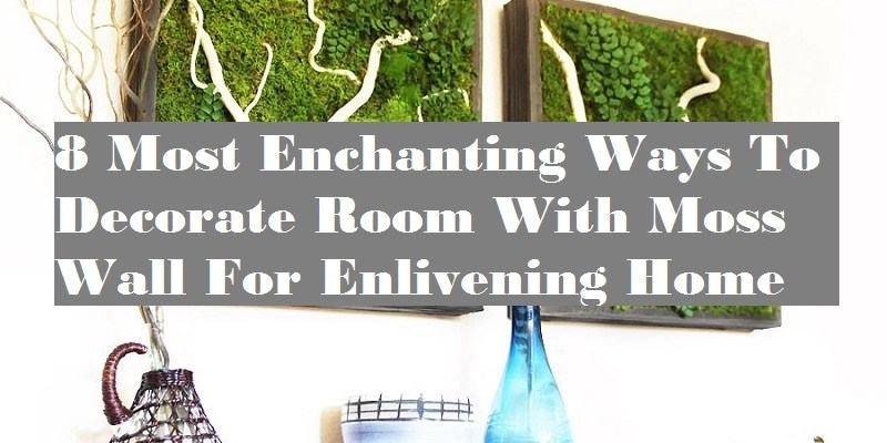 8 most enchanting ways to decorate room with moss wall for enlivening home