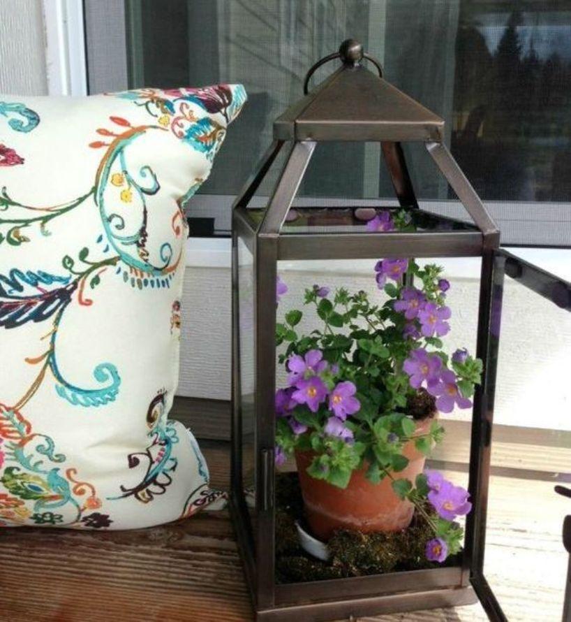 Lantern With Purple Blooms