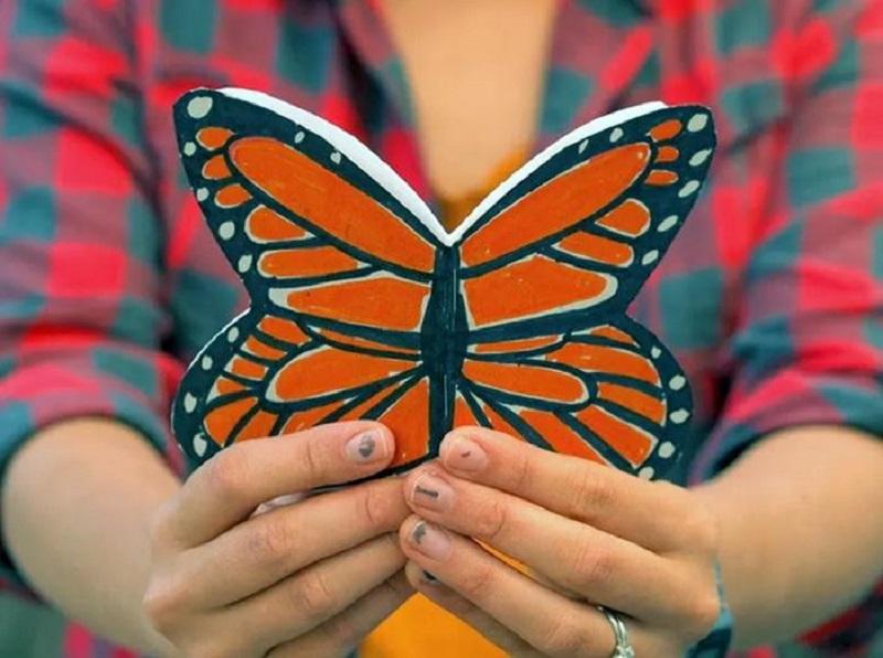 Beautiful butterfly notebook
