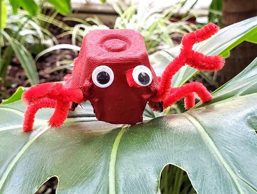 Cute eggs cartoon crab