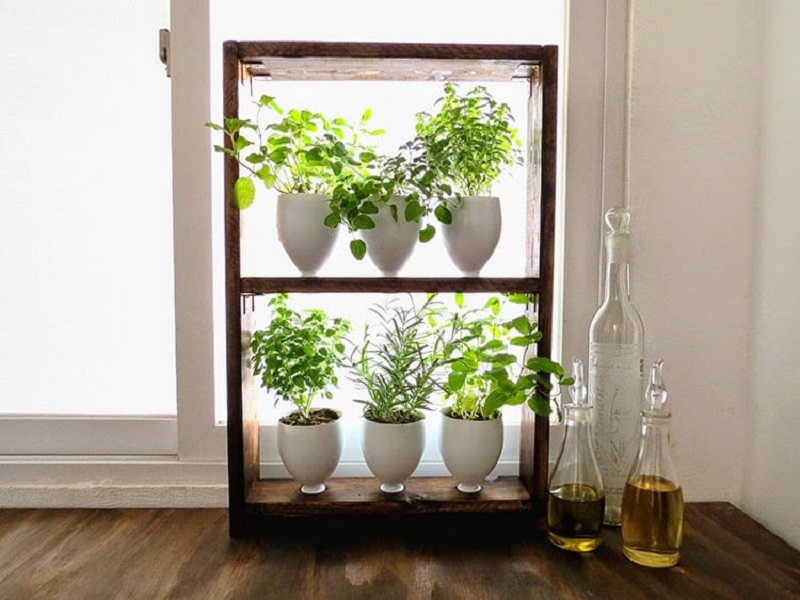 Diy simple herb garden