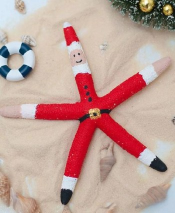 Cute starfish santa