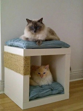 Gorgeous and Cute DIY Scratcher Ideas That Will Make Your Cats Love You To The Bone