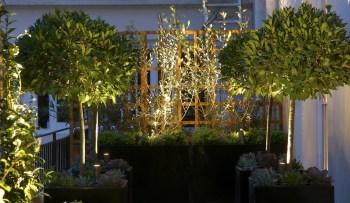 Aesthetic lighting at night