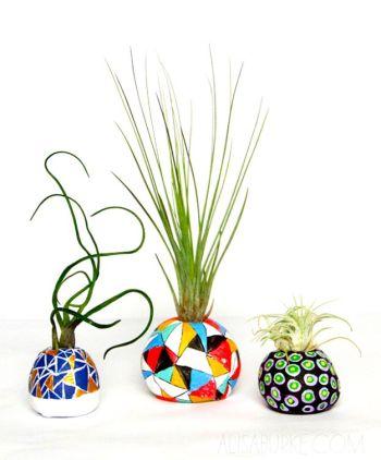 Diy air plant pot