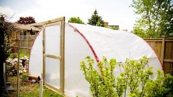 Diy greenhouse trampoline