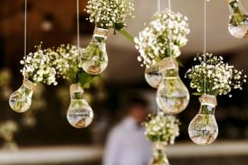 Diy hanging light bulb planters