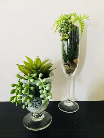 Hanging burro's tail in a wine glass DIY Tabletop Centerpiece Of Succulent In Wine Glasses