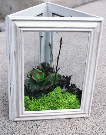Succulent garden in frame DIY Appealing Frame Ideas For Gardeners That Worth To Try