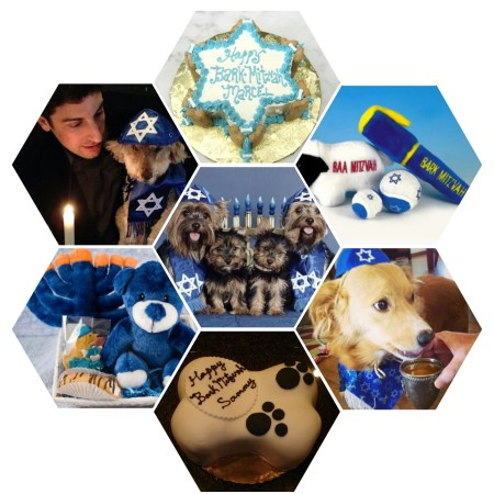 The significance of dogs in Judaism represented by a collage of Bark Mitzvah celebrations with decked up pups, cakes and gifts.