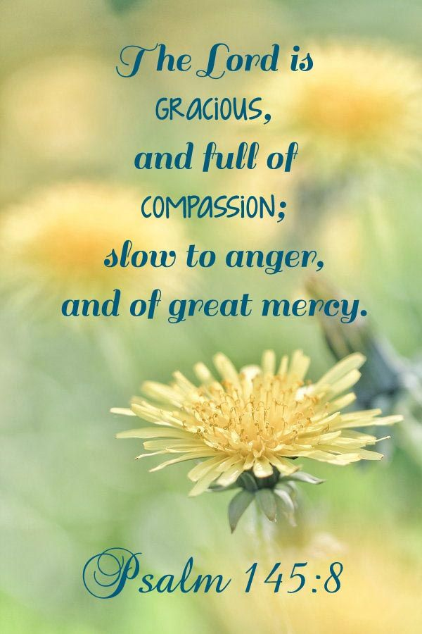 Psalm 145:8 The LORD [is] gracious, and full of compassion; slow to anger, and of great mercy.