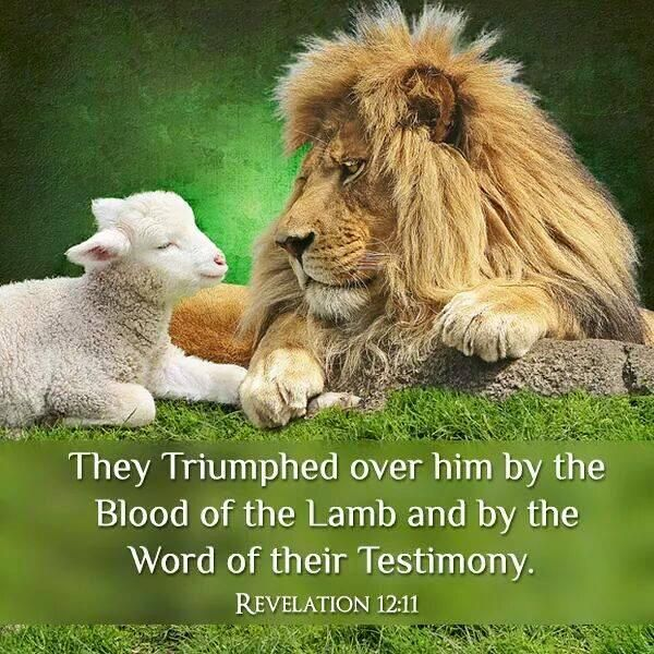 Revelation 12:11 And they overcame him by the blood of the Lamb, and by the word of their testimony; and they loved not their lives unto the death