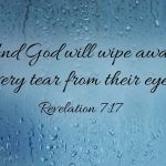Revelations 7:17 For the Lamb which is in the midst of the throne shall feed them, and shall lead them unto living fountains of waters: and God shall wipe away all tears from their eyes.