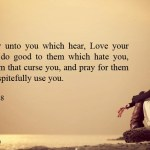 Luke 6 27-28 But I say unto you which hear, Love your enemies, do good to them which hate you, Bless them that curse you, and pray for them which despitefully use you.