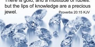 Proverbs 20:15 KJV