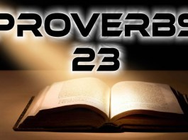 proverbs 23