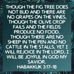 Verse of the day: Habakkuk 3:17-18 green image with a fauna background.