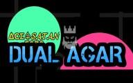Dual-Agar
