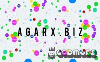 Agarx.biz
