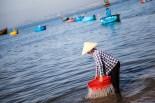 Vietnam: Ho Chi Min, Mui Ne, Hoi An, Hanoi, Halong Bay