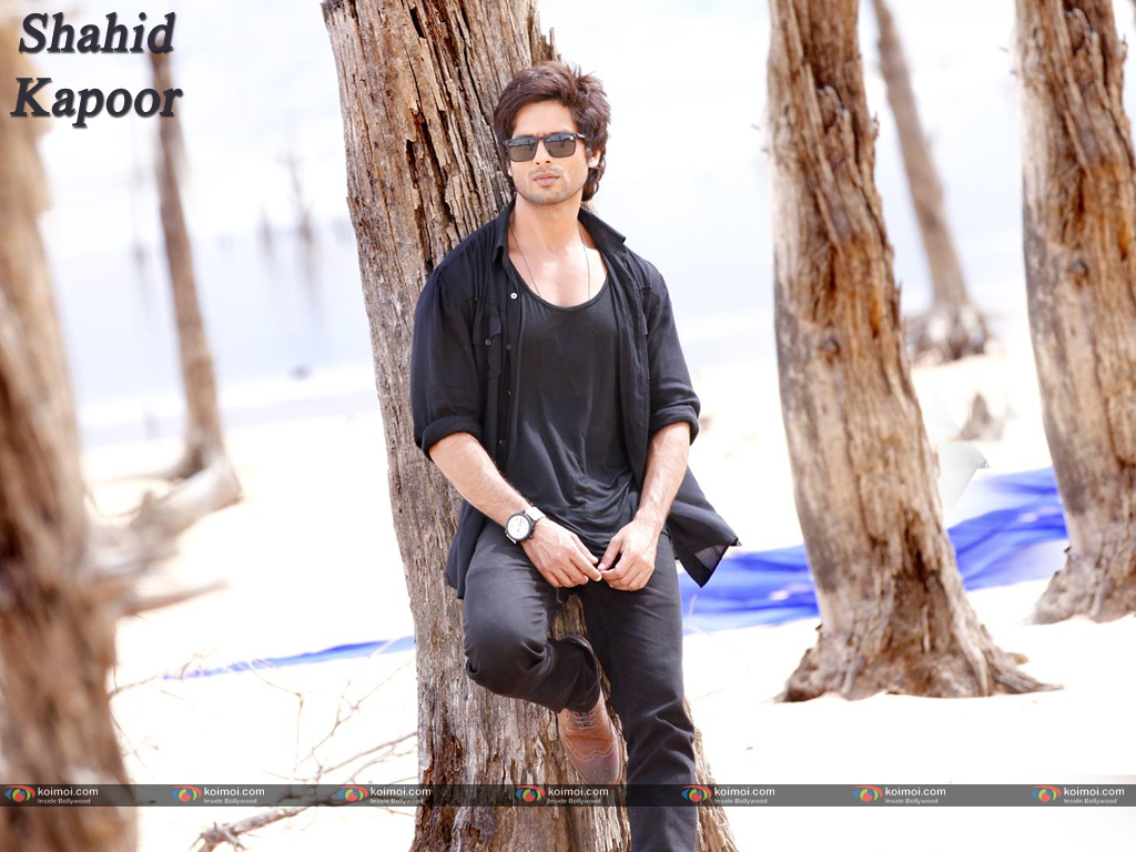 Shahid Kapoor Photos Images Pics Hd Wallpapers Download