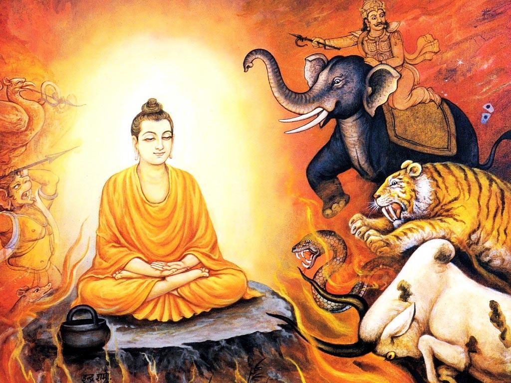 "gautama buddha and siddhartha Siddhartha gautama (also known as the buddha ""the awakened one"") was the leader and founder of a sect of wanderer ascetics (sramanas."