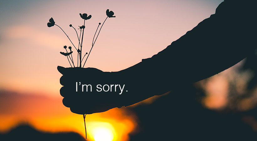 i am sorry hd picture