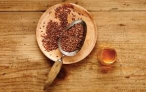 NUTRAM Optimum Combinations - семена льна и жир лосося - для сияющей, здоровой шерсти