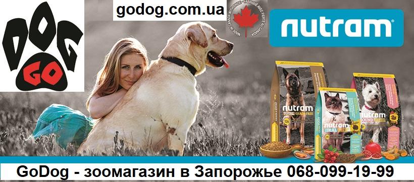 Бесплатная доставка зоотоваров GoDog