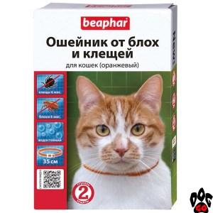 BEAPHAR Ошейник для кошек от блох и клещей, 35 см (оранжевый) - 2