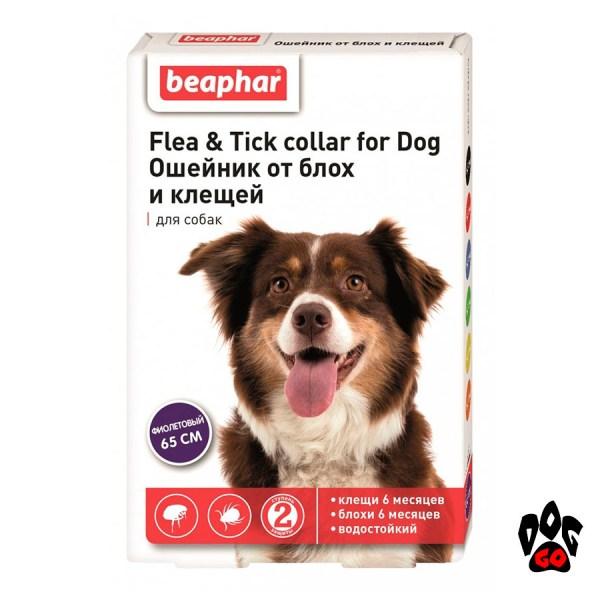 Ошейник БЕАФАР для собак от блох и клещей, 65 см (фиолетовый)
