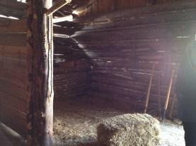 Horse stall.
