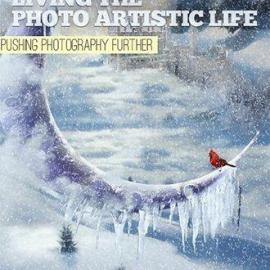 Living The Photo Artistic Life February 2021 Free Download