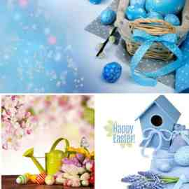 Easter compositions stock photo Free Download