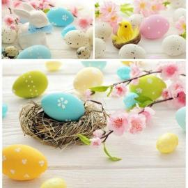 Easter eggs and flowers stock photo Free Download